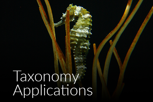 taxonomy-applications